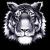 Twinsburg Tigers